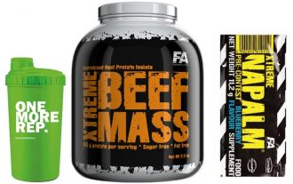 FA BEEF MASS 2,5kg + shaker + TESTER