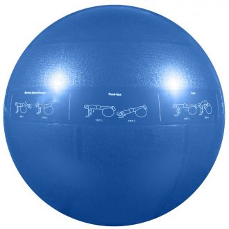 GoFit Pro ball 55 + tréninkové DVD
