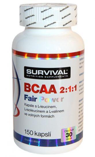 Survival BCAA 2:1:1 Fair Power