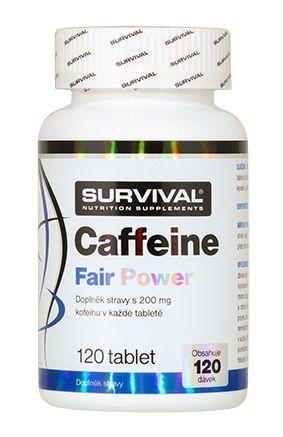 Survival Caffeine Fair Power 120 tablet