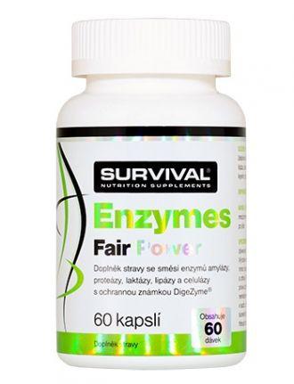 Survival Enzymes Fair Power 60 kapslí