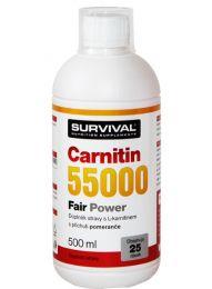 Survival Carnitin 55000 Fair Power