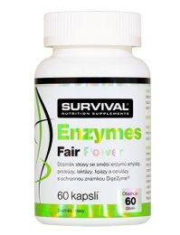 Survival Enzymes Fair Power